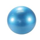 Gymnic LE9565 Gymnic Exercise Ball - 65cm Blue