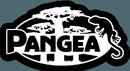 Pangea Reptile PS-W 50 Pack Pangea Logo Sticker