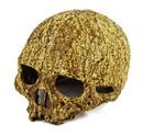 Pangea Reptile WNS73-1 Wholesale Human Skull Cave