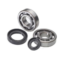 Outlaw Racing Crank Bearing And Seal Kit - OR241101