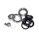 Outlaw Racing Differential Bearing and Seal Kit - OR252006