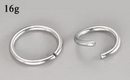 Painful Pleasures UR279 16g Seamless Annealed Stainless Steel Ring