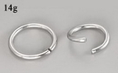 Painful Pleasures UR281 14g Seamless Annealed Stainless Steel Ring