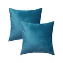 TOPTIE Set of 2 Velvet Pillow Covers 18