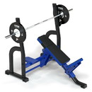 Power Systems 40865 Sierra Olympic Incline Bench