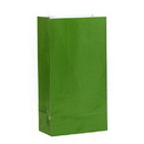 GREEN PAPER PARTY BAGS