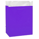 Partypro 22163 Grape Glossy Gift Bag Small