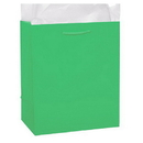 Partypro 22378 Apple Green Glossy Gift Bag Large