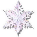 Partypro 50026 Opalescent Winter Snowflake (24In.)