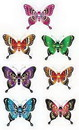 Partypro 50720 Majestic Butterfly (5In.)