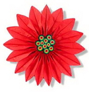 POINSETTIA - TISSUE (30IN.) *