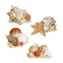 Beistle 50236 Seashell 17In. Durashield Cutouts