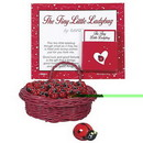 Partypro EL3490 Ladybug Good Fortune Mini Favor