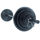BodySolid 355 Lb. Olympic Plates only