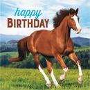Creative Converting 339763 Horse And Pony Luncheon Napkin, Happy Birthday (Case Of 12)