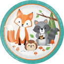 Creative Converting 343945 Wild One Dinner Plate (Case Of 12)
