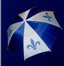 Custom Quebec Umbrella Hat