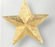 Custom Star Award Pin