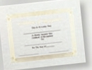 Custom Foil Embossed Stock Certificate (Recognition), 8 1/2