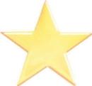 Custom Service Lapel Pin Star