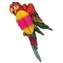 Custom Tissue Parrot (17