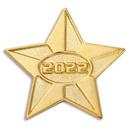 Custom 2022 Gold Star Pin, 1