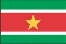 Custom Nylon Surinam Indoor/ Outdoor Flag (3'x5')