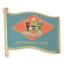 Custom Delaware State Flag Pin