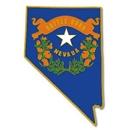 Custom Nevada Pin