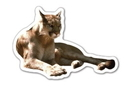 Custom Cougar Magnet - 5.1-7 Sq. In. (30MM Thick)