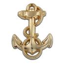 Custom U.S. Navy Midshipman Pin, 1 1/8