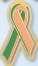 Custom Organ Donor / Organ Recipient Awareness Ribbon Bookmark