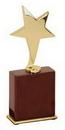 Custom Gold Star Award, 2 3/4