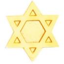 Custom Service Lapel Pin Jewish Star