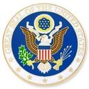 Custom U.S. Seal Pin, 1
