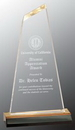 Custom Gold Optima Reflection Acrylic Award, 5