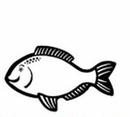 Custom Fish Notekeeper Magnet - 35 Mil Process Color (2 1/2