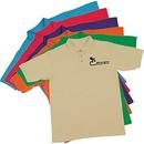 Custom 100% Cotton Polo Shirt (Screen Printed)