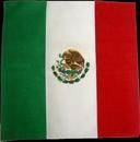 Custom 100% Micro Polyester Mexican Flag 22