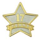 Custom Year Of Service Star Pin - 17 Year, 7/8
