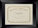 Custom Beveled Glass Certificate/ Document Frame (11