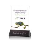 Custom Sierra Rectangle VividPrint Crystal Award (6