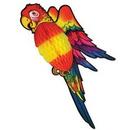 Custom Tissue Parrot (30