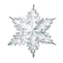 Custom Metallic Winter Snowflake, 24