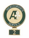 Custom Cloisonne Recognition/Award and Years of Service Pin (1