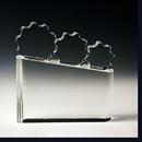 Custom Synergy Crystal Award (Sand Blasting), 7
