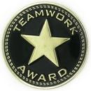 Custom Teamwork Award Pin, 7/8