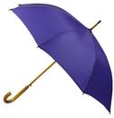 Custom Fashion Stick Umbrella