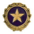 Custom Gold Star Wives of America Pin, 1