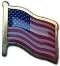 Custom Printed Flag Gold Tone Lapel Pins with Epoxy Done, 5/8